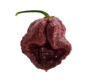 The 7 Pot Douglah is the world's 3rd spiciest pepper