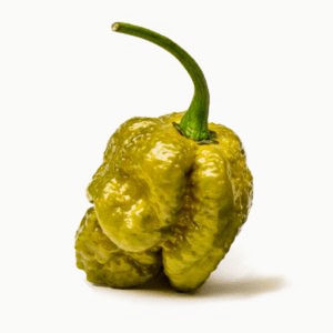 Pepper X is arguably the world's spiciest pepper