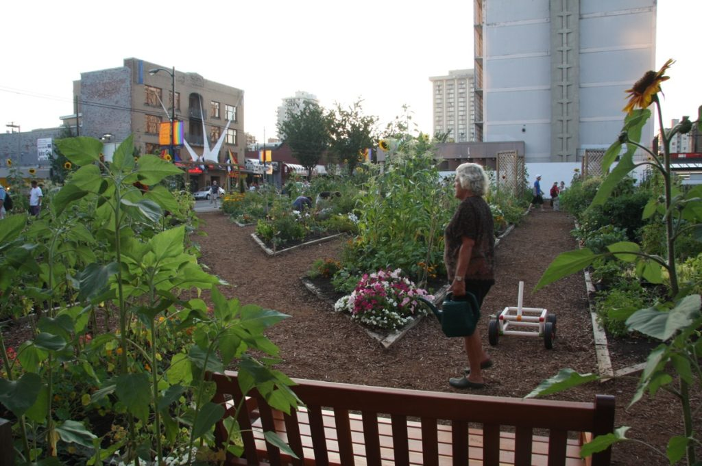 Community gardens are taking over the Bronx!