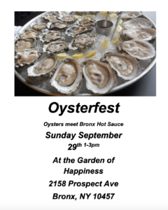 Oysters in the Brox