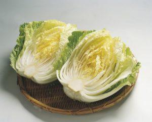 chinese cabbage has umami