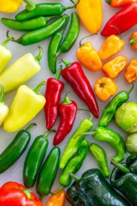 Why peppers are fruits